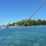今年度も短期語学留学でセブ島に行きます!